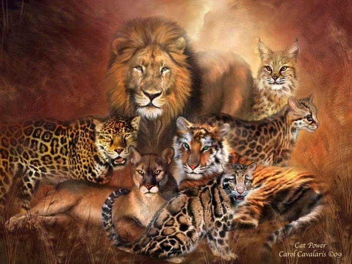 Corazon de leon #santodaime #caminorojo 17 CORAZON DE LEÓN Of Juan Esteban Asuad Busca calma y silencio. Respira (se dice y se respira) oh oh oh OH corazon de leon oh oh oh OH guerreros de amor oh oh oh OH hijas-de la luna oh oh oh OH guerreros del sol Brilla en todo-el universo La gloria infinita de Deus Padre-Madre Con grande amor-y-alegria-Me firmo Yo soy luz, Yo soy paz, soy amor oh oh oh OH corazon de leon oh oh oh OH guerreros de amor oh oh oh OH hijas-de la luna oh oh oh OH guerreros del sol Quien este despierto Llame-los-que estan durmiendo Nueva dimensión surgiendo- Ven aqui a Ser el resplandor oh oh oh OH corazon de leon oh oh oh OH guerreros de amor oh oh oh OH hijas-de la luna oh oh oh OH guerreros del sol Siento la tierra vibrando Yo estaré bailando hasta el amanecer Estamos-en la batalla Atencion (Se para silencio respiro) Abra ojos y oídos Abra el corazón oh oh oh OH corazon de leon oh oh oh OH guerreros de amor oh oh oh OH hijas-de la luna oh oh oh OH guerreros del sol Honrando al fuego sagrado que fué El primer ser que se iluminó El sol la luna y las estrella Y todos las galaxias a mi alrededor oh oh oh OH corazon de leon oh oh oh OH guerreros de amor oh oh oh OH hijas-de la luna oh oh oh OH guerreros del sol Luz de conocimiento semilla sagrada Que brota solo con amor La Reina de la Floresta Llama todos sus hijos cumplir su misión oh oh oh OH corazon de leon oh oh oh OH guerreros de amor oh oh oh OH hijas-de la luna oh oh oh OH guerreros del sol
